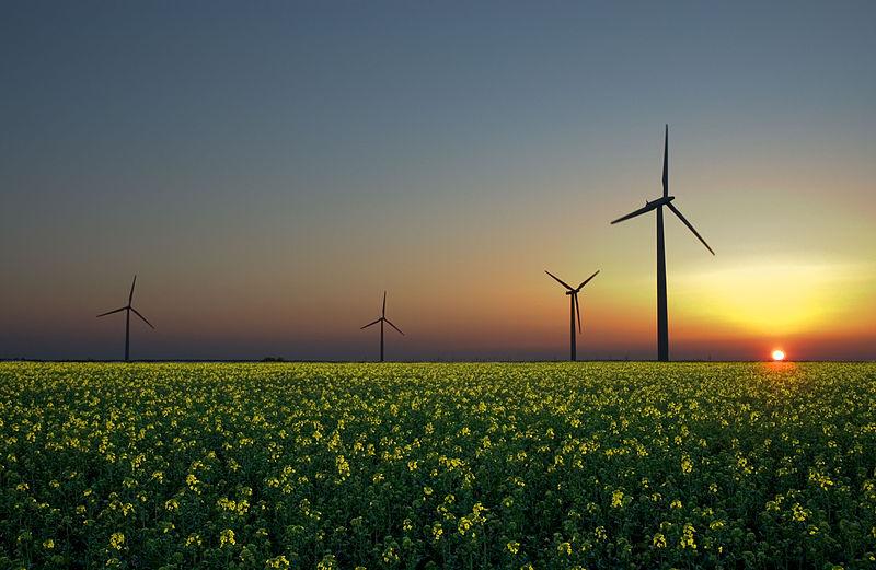 L'Allemagne est-elle en train de gagner le pari de la transition énergétique ?
