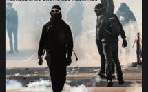 Chronique du livre d'Eric Delbecque : Les Ingouvernables